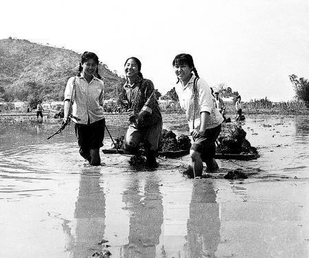 上山下乡的女知青风采。(来源:凤凰网历史)
