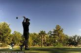 美国南卡罗来纳州。Hilton Head和查尔斯顿(Charleston)等高球圣地吸引着各路选手,其中有些球场举办过莱德杯。