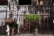 湖南阳雀坡古村落:一个现实版的世外桃源 - xjh019(汉江石) - 汉江石的博客