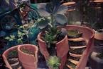 碎花盆DIY出的童话花园 残缺也可以如此完美