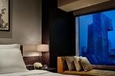 北京瑰丽酒店充分彰显中国首都的历史、文化与地理特色。 这里将现代与经典、活力与宁静巧妙融入酒店的设计及氛围中,让客人畅享奢华精美之同时,亦能感受家一般的舒适温馨。正对京城地标中央电视台,可谓京城之中难得一处的都市桃源,完美诠释古典与现代交融的北京特色。 (实习编辑:周芝)