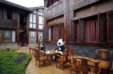 熊猫酒店:四川峨眉山脚下一处川西民居式院落街区内,全球首家以熊猫文化为主题的酒店亮相。从庭院景观、门神、雕塑、过道墙画、房间全是熊猫文化主题,房间里每一样物品都与熊猫有关。(实习编辑:周芝)