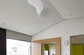 楼上,几个充满活力的选择,包括灰绿色橱柜,楼上的厨房和一个几乎实物大小的鹿,构建出更加创造性的简单的空间。