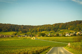 """【2】香槟区的""""山坡、酒庄和酒窖"""",法国"""