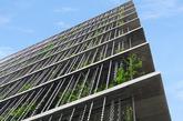 雨链(日语叫做kusari-toi,鎖樋)是用于描述垂挂于住宅屋顶任何物体的通用术语,它充当檐槽的功能。这是日本的设计,此功能物件最早出现于安土桃山时代,大约在公元1558-1600年。那时,将来自麻类植物最外层的纤维编织成绳索,然后悬挂于房屋的屋檐上。(实习编辑:刘嘉炜)