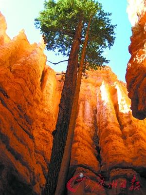 要走到峡谷的最底端,才能真正体会大峡谷的震撼。