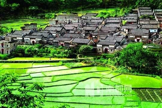 """杨池古村是岭南古民居建筑的典范,被誉为""""岭南第一村""""。"""