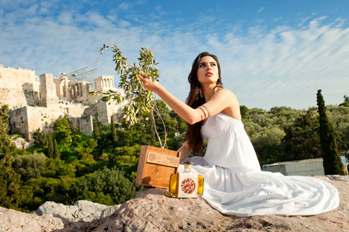 一款中国橄榄油要进希腊一天内在苏宁众筹了科目二驾考技巧图片