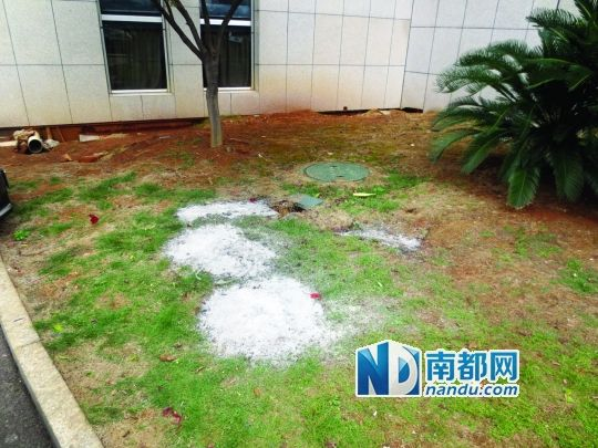 湘潭民企老板市政府跳楼自杀 土地变性半年无果