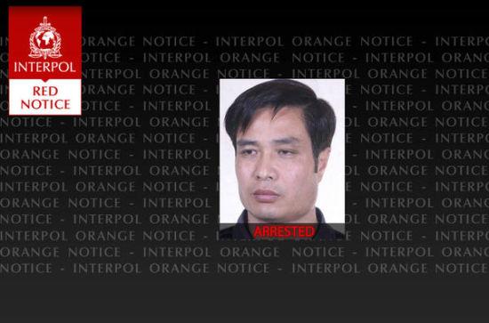 国际刑警组织对孟某发布红色通缉令。(图片来源:国际刑警组织网站)