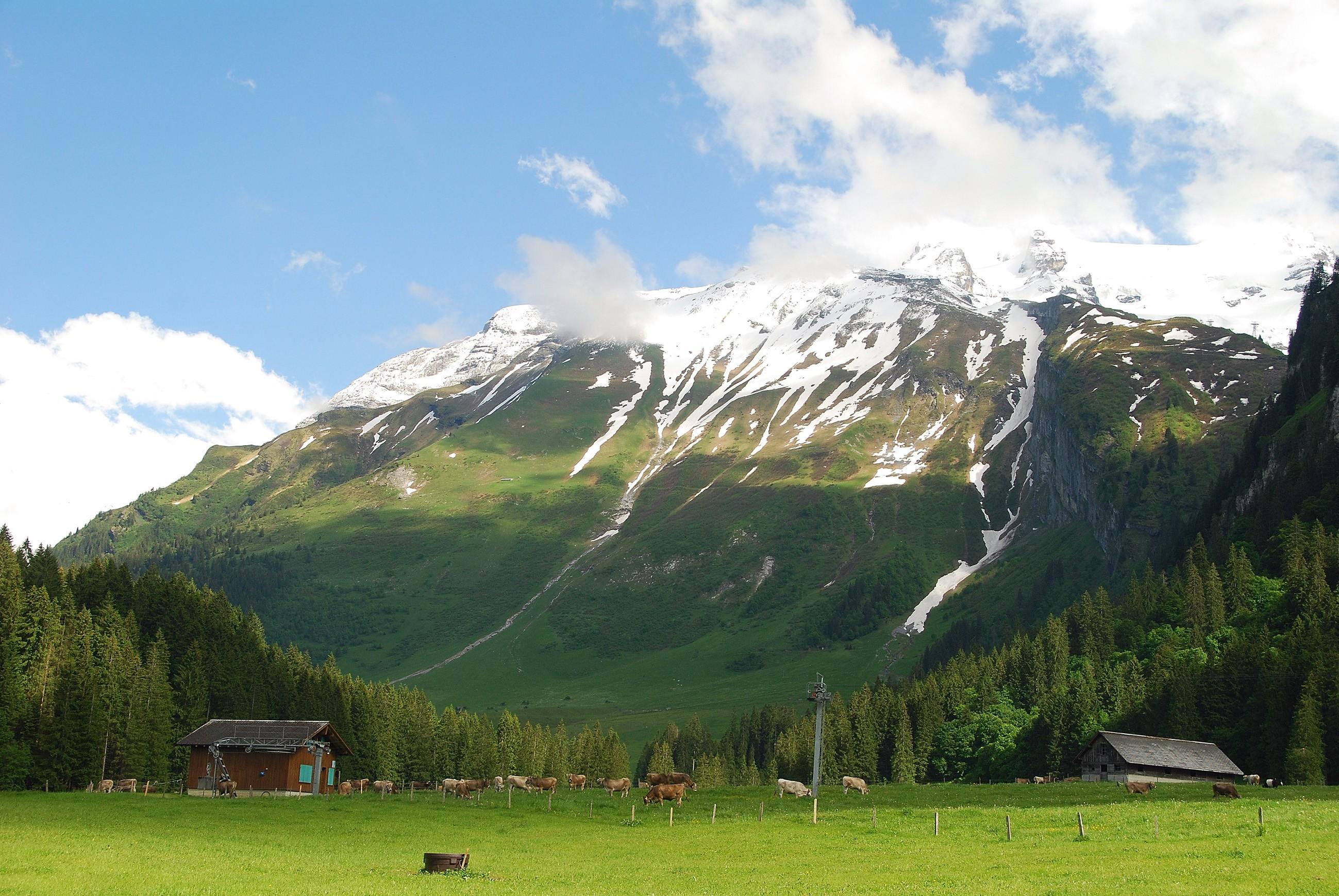 今天悦住君带领大家来到瑞士风景如画的日内瓦,看看红十字会的总部有