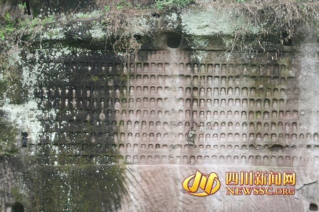 """四川现""""千佛岩"""":巨石上刻近1000尊佛像"""