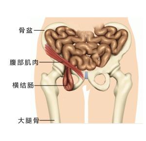 捅美女肚子肠子图片美女的肠子肠子美女肠子