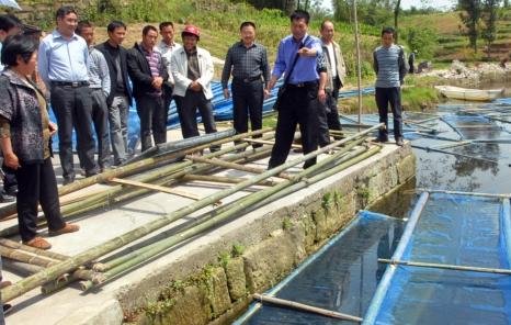...水产站相关项目负责人向与会人员介绍鱼菜共生有关技术要点