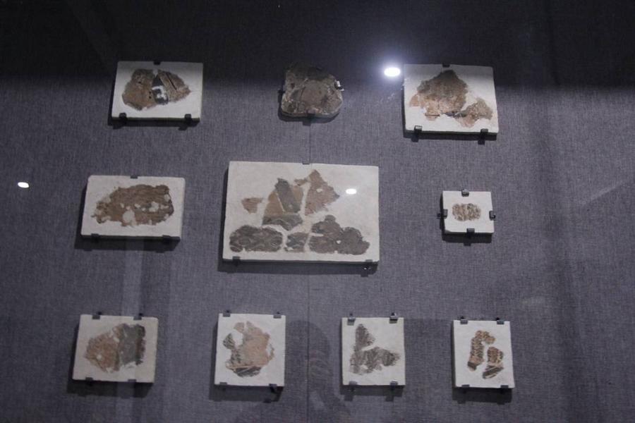 秦咸阳宫宫室壁画 目前发现最早的宫殿壁画