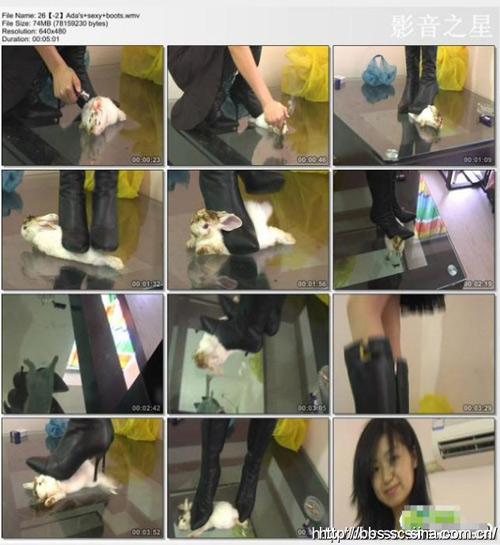她们虐动物拍成视频的目的在于获取暴利