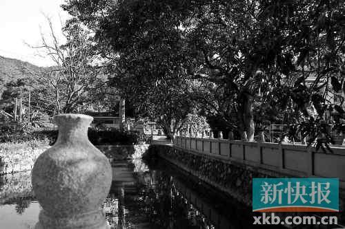 山故居,翠亨村绿树成荫. ( ) -南京临时政府多份重要档案重见天