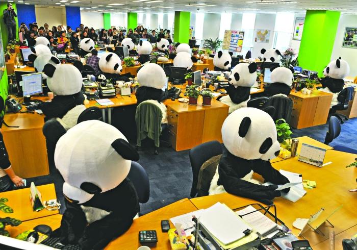 熊猫 大闹天府软件园