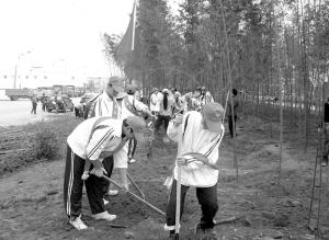 青年志愿者添绿金汁河。