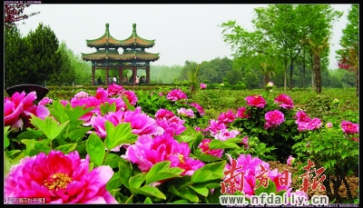 (原创)醉在春景: - liangshange - 一线天