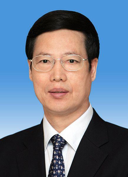 中华人民共和国国务院副总理张高丽新华社发