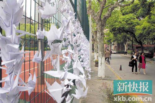 ■复旦大学上海医学院东院几十米开外的运动场围栏挂起千纸鹤,而这些都是同学们自发为悼念黄洋折的。 新快报记者王吕斌/摄