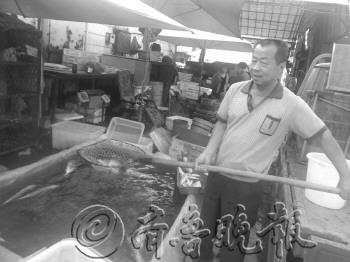 ▲滨州一水产店的徐师傅展示他家出售的淡水鱼.-海鲜奇缺,梭子蟹