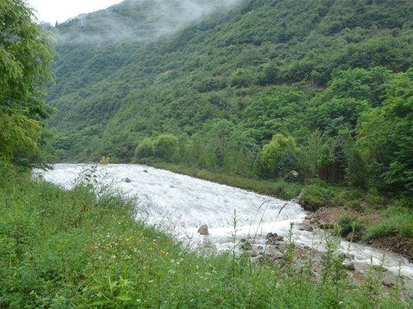 官鹅沟国家森林公园范围包括大河坝沟,马圈沟,官鹅沟,缸沟,八峡沟,大