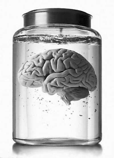 长生不老梦成真 200岁大脑配套人造器官