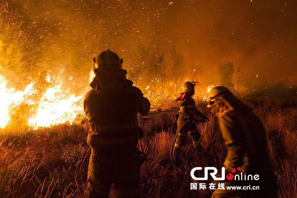 木里森林火灾幸存消防员,出现急性应激反应,心理专家介入援助图片