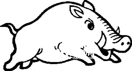 南都讯 记者陈紫嫣 发自香港 两只小野猪昨日在香港海洋公园内晃荡被游人发现,随后警方与渔护署工作人员赶到现场展开一场人猪对抗赛,最终一只野猪被擒,并放生到大潭郊野公园,另一只野猪则不知所终。 昨天上午11时25分许,数名游客在海洋公园山顶内近南朗山道车道入口发现两只野猪,立即通知海洋公园的工作人员,工作人员在香港仔黄竹坑海洋公园海洋摩天塔的吸烟区内发现2只野猪后,便立即将上址一带封锁及报警。 警方接报到场调查,手持盾牌戒备以防止野猪逃走及伤人,另一方面还通知了渔护署的工作人员到场协助捕捉野猪。渔护署人员