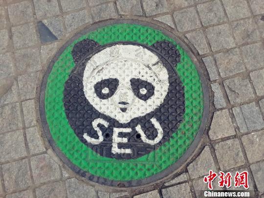 熊猫涂鸦 齐书懿 摄