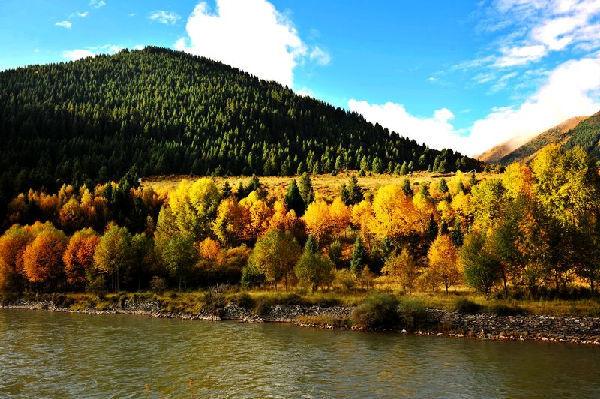 秋季的班玛风景一样的迷人!
