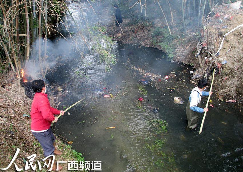 陆川冬天的风景230字