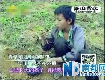 杨六斤_杨六斤真的像节目中那般孤苦无助?