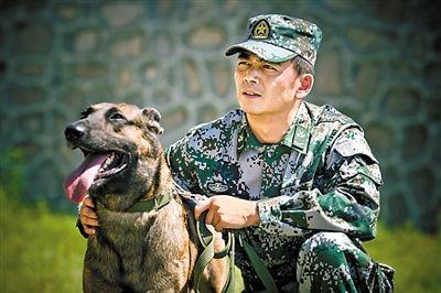 军犬奇兵_《神犬奇兵》主演杨烁和军犬. (资料图片)-聚焦战士与军犬