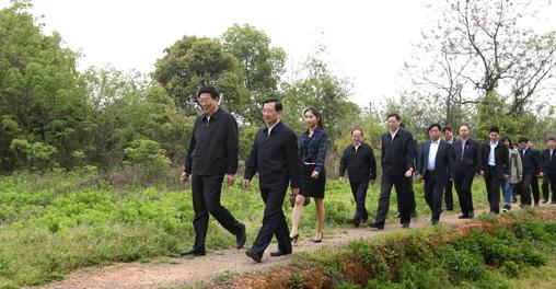 湖南党政代表团在瑶湖郊野森林公园考察